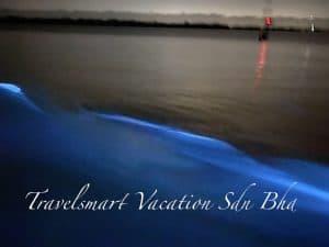 blue tear kuala selangor